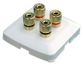 Terminal banana plug 4× female on the wall